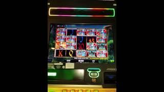 Play Crazy Lucky