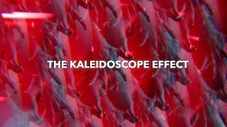 Insane Kaleidoscope Camera Effect!