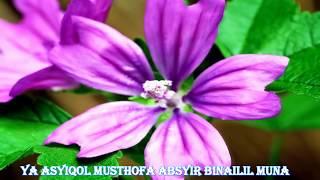 Download Ya Ashyiqal Mustofa (Cover) Sholawat Merdu