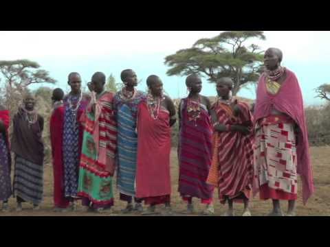 AFRICA- MASAI MARA  parte 2 Bruno Davò
