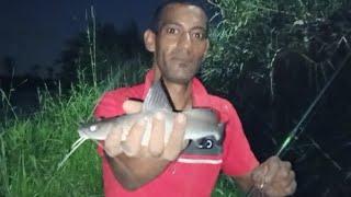 صيد السمك من ترعه الابراهيميه صيد سمك بلطى وبياض وكراكير