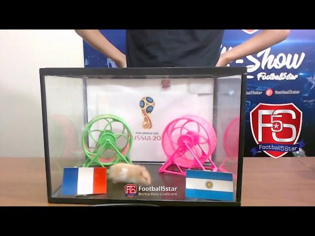 Prediksi Prancis vs Argentina bersama PO si Hamster