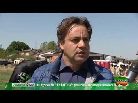 Pianeta Verde La Favola 01 05 2017 Youtube
