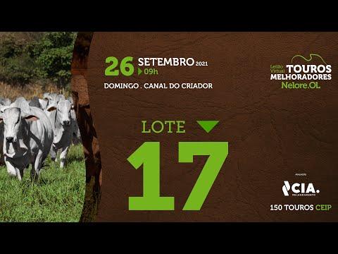 LOTE 17 - LEILÃO VIRTUAL DE TOUROS 2021 NELORE OL - CEIP