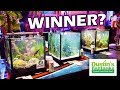 AQUARIUM AQUASCAPING CONTEST: And The Winner Is?