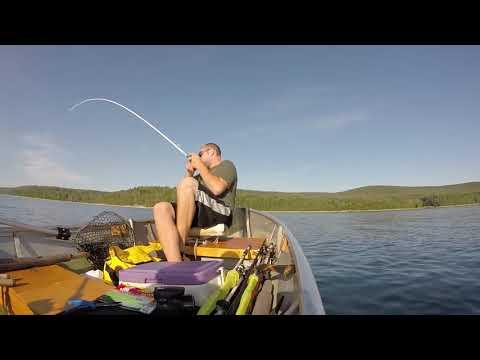 Ryan's First Lake Trout+Tips!!! (Quabbin Reservoir)