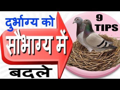 द�र�भाग�य को सौभाग�य में बदल सकते हैं यह काम- 9 Vastu Tips for Prosperity-Vastu Shastra
