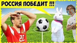 ШОК! Кролик Бусинка предсказала ПОБЕДУ России! Хорватия ЕДЕТ домой? Отвечаем на вопросы про Бусинку