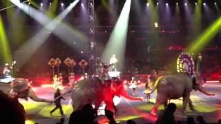 Ringling Bros and Barnum & Bailey 2013 Circus