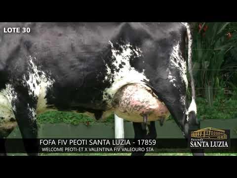SANTA LUZIA   LOTE 30