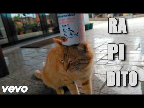 PeloOveja - RAPIDITO ft. ZarpasSucias (Parodia DESPACITO)