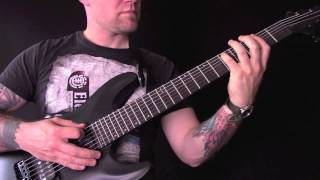Schecter Stealth C-7 7 String Guitar Review Demo