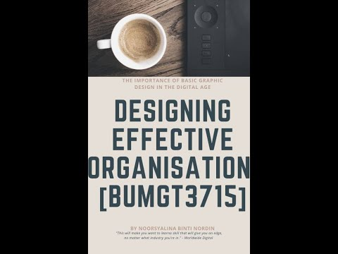 Topic 2 Strategy Organization Design And Effectiveness Bumgt3715 Youtube