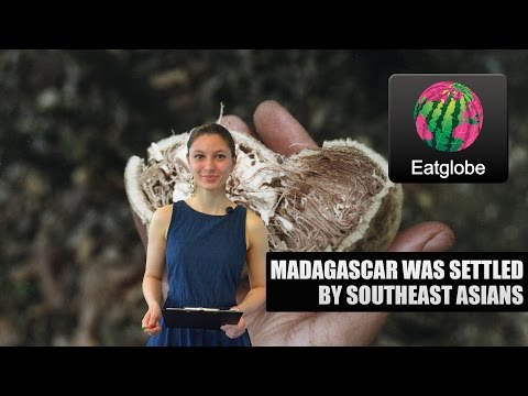 Madagascar was Settled by Southeast Asians
