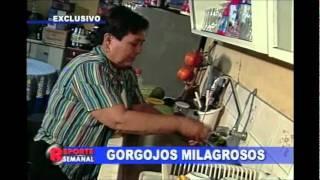 Gorgojos Milagrosos - Reporte Semanal