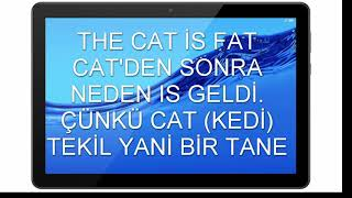 TO BE FİİLLERİ KONU ANLATIMI