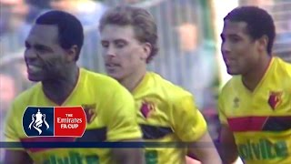 Arsenal v Watford - FA Cup R6 (1987)   From The Archive