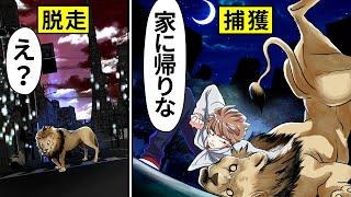 【アニメ】サファリパークのライオンがまさかの脱走……⇨ライオンの赤ちゃんと小さき百獣の王が対面した結果…【漫画動画】