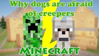 [Minecraft] Why Dogs Are Afraid Of Creepers???