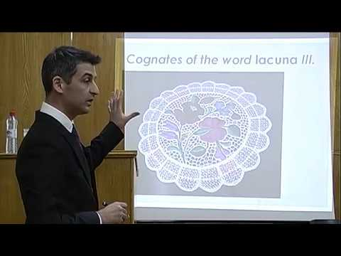 Istvan Lenart: Application of Lacuna Theory in the Business Context