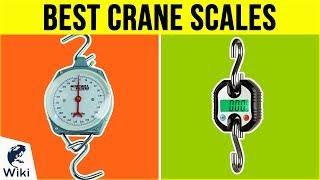 9 Best Crane Scales 2019