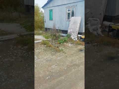 Чернобыль зона отчуждения фильм. Всё три фильма
