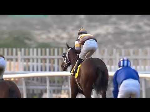 Jebel Ali 17.11.17 Race 6