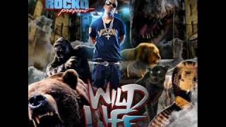 ROCKO - WILD LIFE - 17 - RAINY NIGHT IN GA
