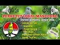 Perkutut Lokal Manggung Untuk Pancingan Terapi Burung Dan Masteran Perkutut Perkututmanggung Gantangan(.mp3 .mp4) Mp3 - Mp4 Download