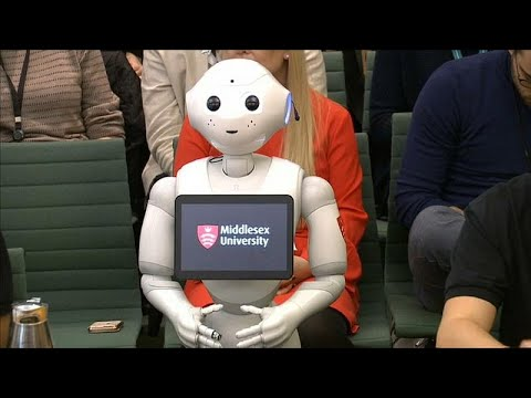 شاهد: البرلمان البريطاني يستجوب -الروبوت فلفل-  - نشر قبل 50 دقيقة
