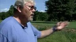 Witness Recounts Morgan Freeman Car Crash