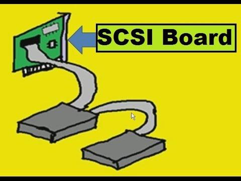 Hardware:  Basic SCSI