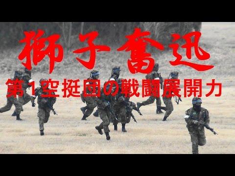 第1空挺団の戦闘展開力 陸上自衛隊 平成29年降下訓練始め「獅子奮迅」