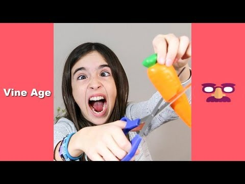 TOP 100 VINES of EH BEE Family (W/Titles) BEST VINE of EH BE