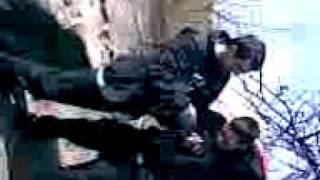 Jawor - Komin - Zrób Tygryska xDe