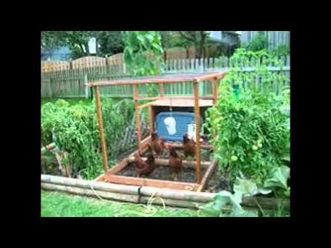 backyard vegetable garden ideas - Backyard Vegetable Garden Ideas Pictures