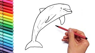 Sea Animal Color Pages for Kids Dolphin - Learn to Draw and Color Marine Animals