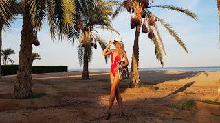 ЕГИПЕТ Онлайн 2020 Супер Отель С Песчаным Заходом В Море