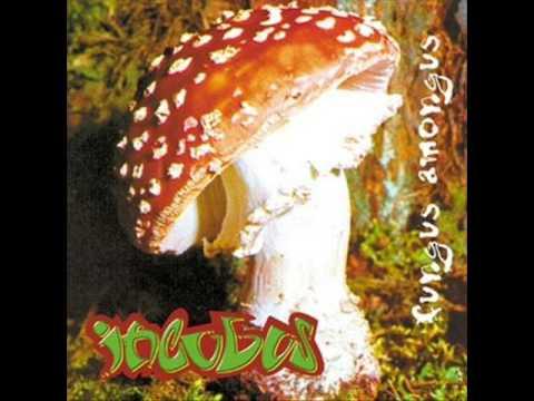 Incubus - Psychopsilocybin
