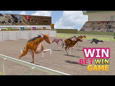 Dog Racing Simulator 3D - Gameplay Android
