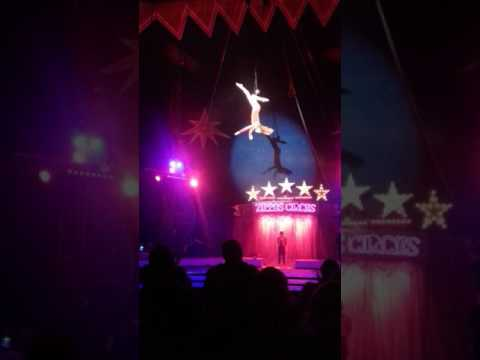 Zippos Circus Falkirk 2017 High Wire Act Video 1