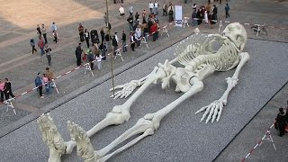 Люди гиганты - Древние жители Земли