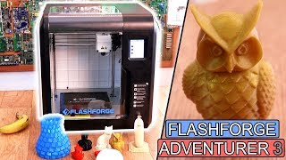 FlashForge Adventurer 3 REVIEW 3D printer