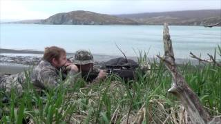 Охота на бурого медведя. Полуостров Аляска. Весна 2016