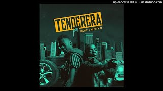 Nutty O & Blot - Tenderera [ Audio]