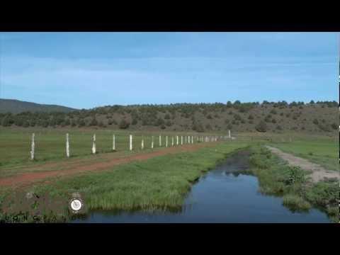 534yd Rock Chuck - Long Range Shooting