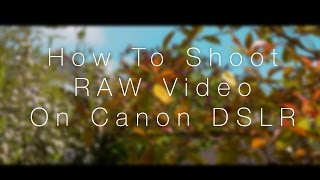 How To Shoot RAW Video On Canon DSLR - Magic Lantern [MLV Mystic Download Link]
