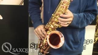 Saxquest! Ben Reece Plays Buffet Senzo Alto