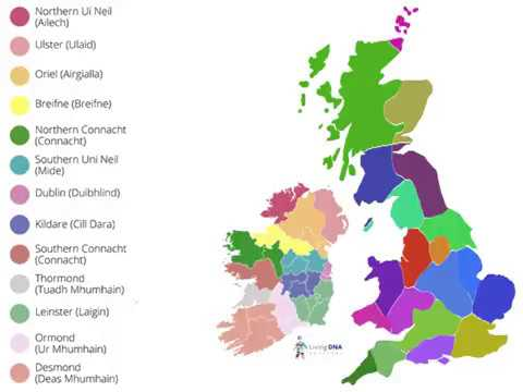 DNA & Irish Genealogy - where to now?