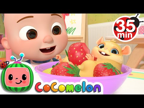 Class Pet Sleepover + More Nursery Rhymes & Kids Songs  CoComelon
